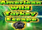 American Wild Turkey