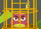 Angry Bird 2016