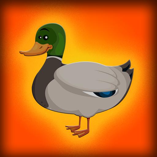 Baby-Mallard-Duck-Escape