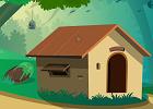 Blue Bird Hut Escape