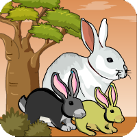 Bunny Forest Escape1