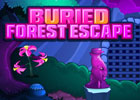 Buried Forest Escape Walkthrough