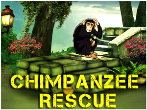 chimpanzee-monkey-re…