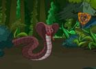Cobra Forest