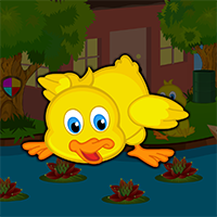 Cute Duckling Bird Escape Game