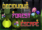 Deciduous Forest Escape Walkthrough