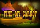 Find My Carrot Walkthrough
