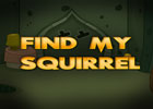 Find My Squirrel Walkthrough