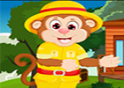G4K Simian Monkey Rescue