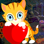 G4k Lovely Feline Escape Game