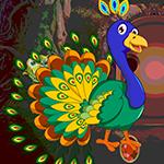 G4k Peafowl Rescue Game_p
