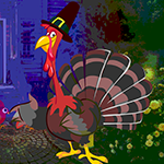 G4k Trapped Turkey Rescue Game