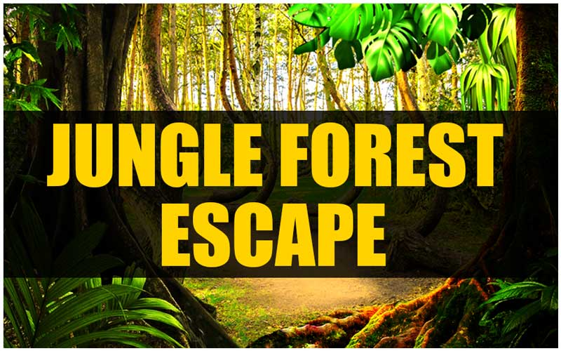 mirchi-jungle-forest-escape