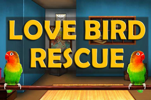 love-bird-rescue