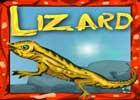 Lizard Rescue