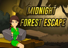 Midnight Forest Escape Walkthrough