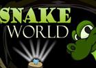 NSR Games Snake World