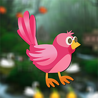Rescue Little Bird Game