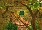 Tunnel Adventure Forest