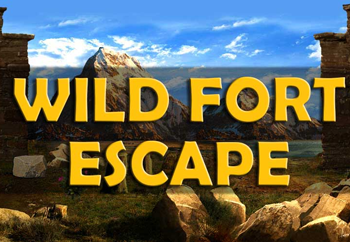 Wild fort escape gam…