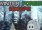 Winter Forest Escape Walkthrough