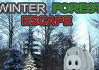 Winter Forest Escape Walkthrough