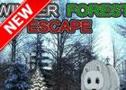 Winter Forest Escape