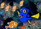 Wow Escape Kooky Fish
