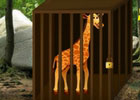 Wow Escape Save The Giraffe