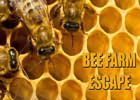 CrazyEscapeGames Bee Farm