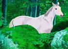 Big Horse Land Escape