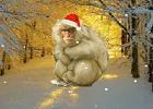 Crazy Christmas Escape