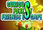 Curious Forest Friends Escape Walkthrough