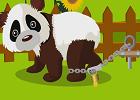 Cute Panda Rescue