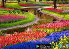 Wow Easter Nature Garden
