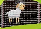 Sheep Rescue