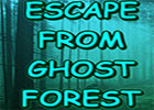 Wow Escape From Ghost Forest