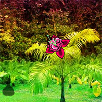 fantasy-tropical-garden-escape
