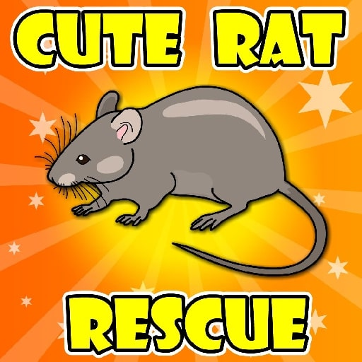 Cute-Rat-Rescue