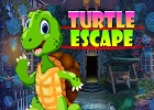 G4K Turtle Escape