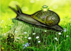 Games2rule Snail Forest Escape