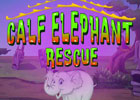 Games4Escape Calf Elephant Rescue