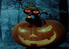G2R Get Back Halloween Cat