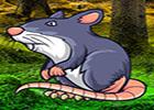 Wow Giant Rat Fantasy Escape