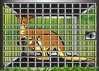 Games2Rule Green Woods Kangaroo Rescue