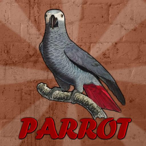 G2j-Grey-Parrot-Rescue