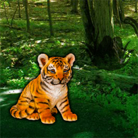 help-the-lonely-tiger-cub