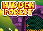 Hidden Forest