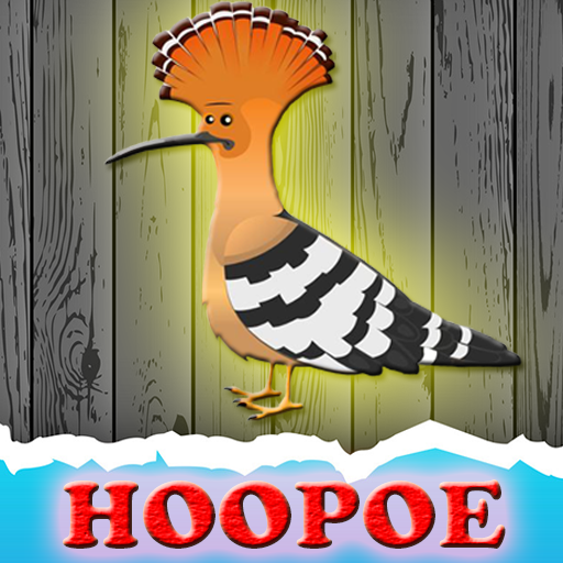 The-Hoopoe-Rescue