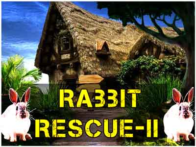 rabbit-rescue---ii